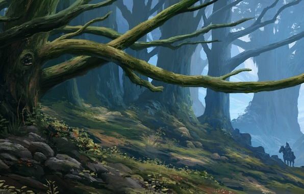 Picture forest, art, rider, deriva
