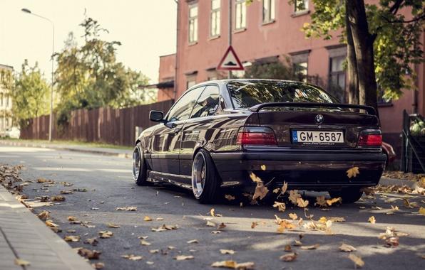 Picture Autumn, BMW, Leaves, BMW, Car, Autumn, E36, Stance