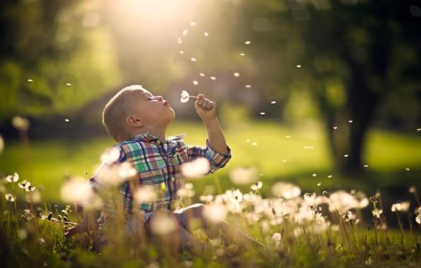 Picture summer, joy, nature, boy