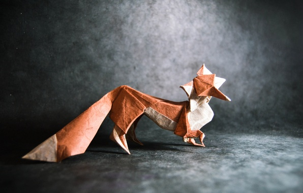 Picture grey, Fox, tail, fox, origami, tail, origami, gray