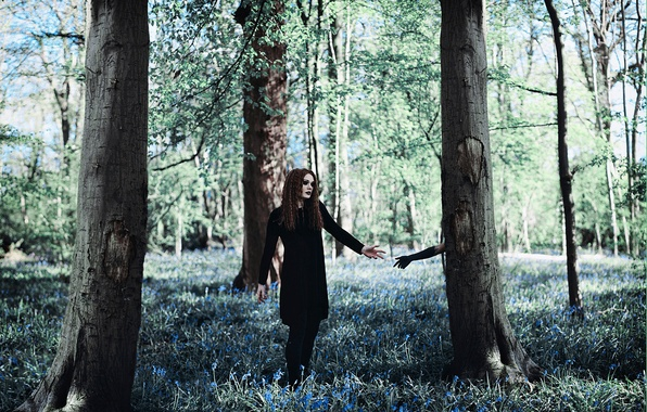 Picture forest, girl, tree, hand, Amy Spanos, The Darkness