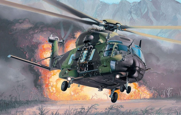 Picture the explosion, fire, helicopter, multipurpose, Eurocopter, NH90, extraction, NHI