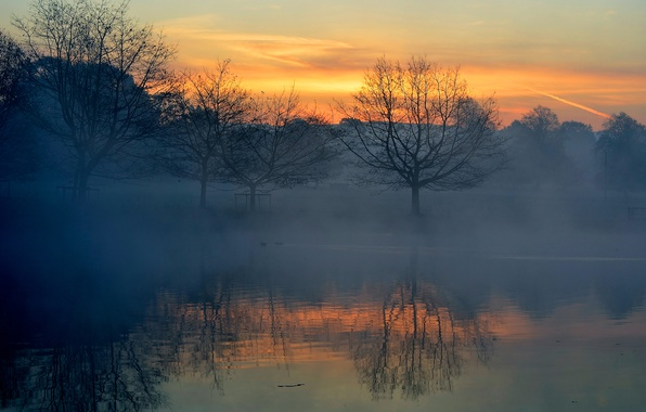 Picture the sky, clouds, trees, sunset, fog, lake, reflection, river, horizon