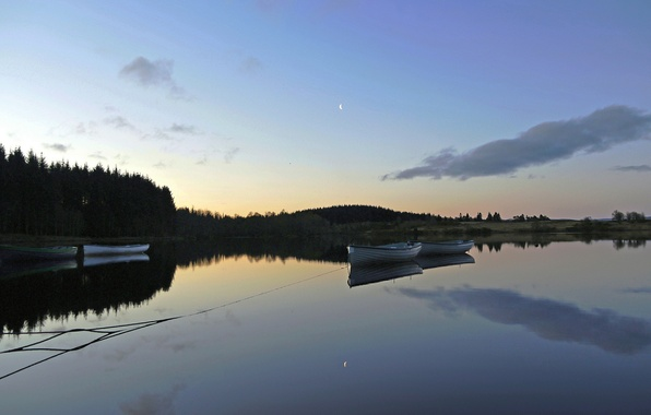Picture forest, lake, dawn, boats, morning