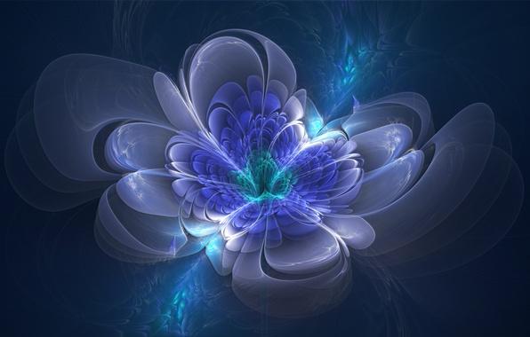 Picture flower, blue, green, lights, lilac, blue, graphics, petals