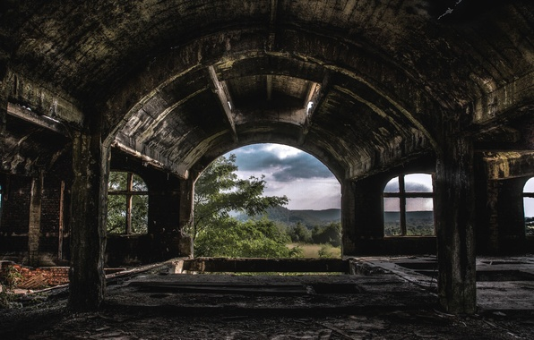 Picture forest, light, nature, devastation, abandonment, the room, mold