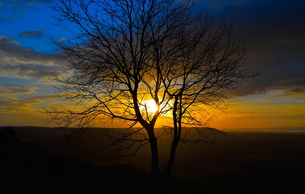 Picture the sky, the sun, clouds, sunset, mountains, nature, tree, silhouette