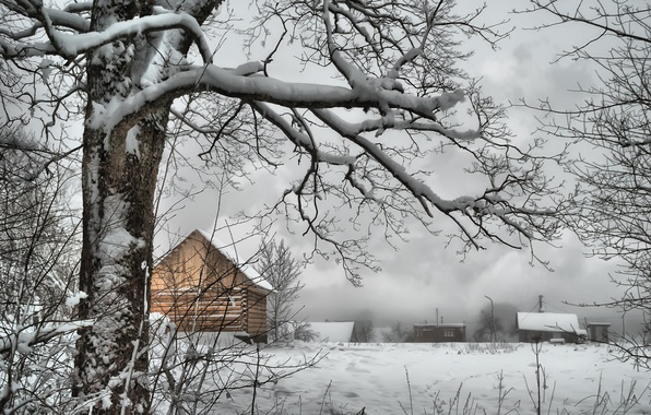 Picture winter, snow, tree, branch, village, frost, houses, Russia, Russia, trees, nature, winter, snow, village, frost