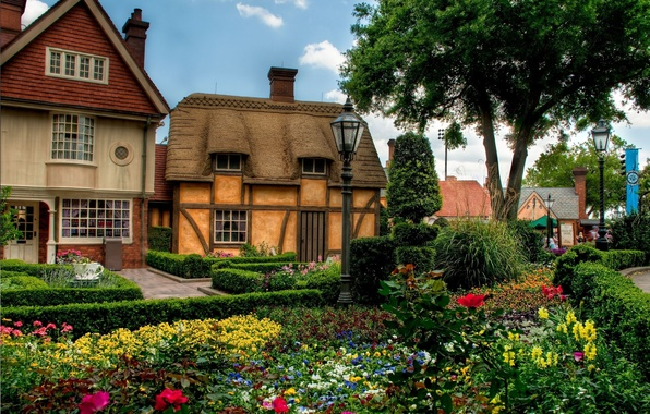 Picture trees, flowers, houses, town, flowerbed