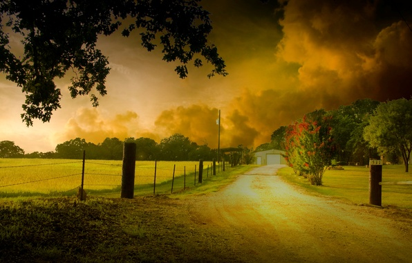 Picture the sky, leaves, clouds, trees, flowers, nature, background, tree, widescreen, Wallpaper, foliage, the fence, fence, …