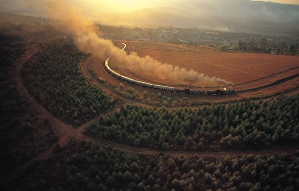 Picture village, Trees, railroad, Trees, Rail Road, Country Side