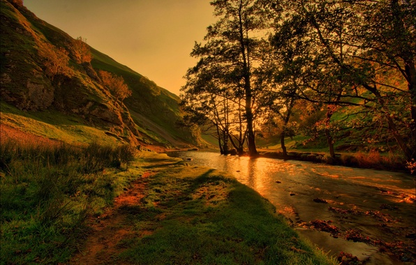 Picture trees, nature, river, mountain, stream