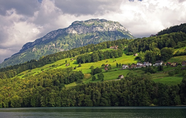 Picture greens, trees, mountains, lake, home, Switzerland, slope, Lake Lucerne