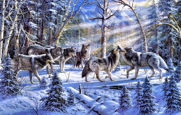 Picture winter, forest, animals, nature, spruce, pack, wolves, painting, tree, the sun's rays, Ronnie Hedge, Kindred ...