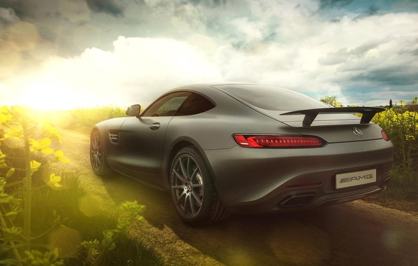 Picture Mercedes-Benz, AMG, Sun, Day, Supercar, Rear, 2015, GT S, Raps
