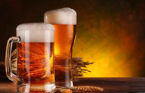 Picture foam, table, glass, beer, mug, ears