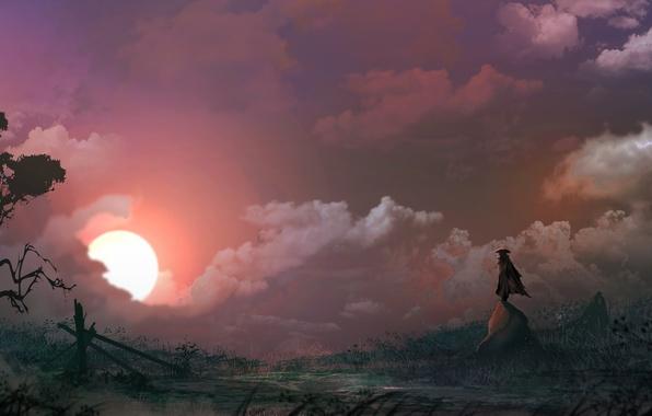 Picture the sun, sunset, tree, rocks, hat, figure, male