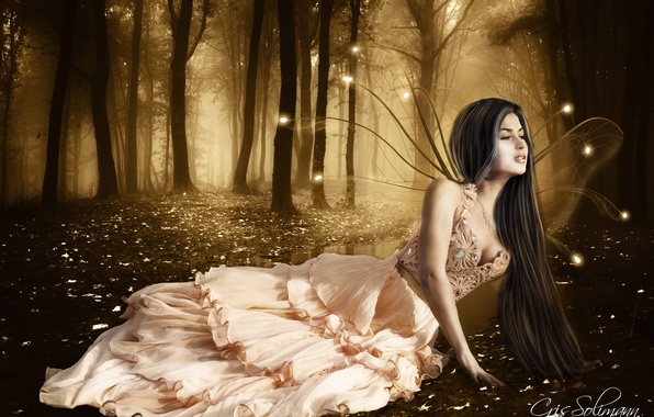 Picture forest, look, girl, trees, face, hair, wings, lights, dress, fairy, lies, long