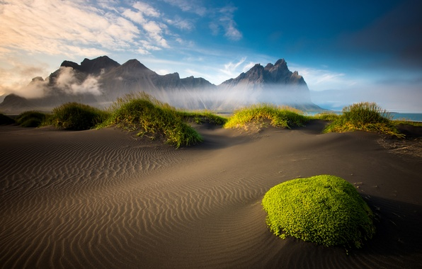 Picture sand, sea, beach, clouds, mountains, moss, Iceland