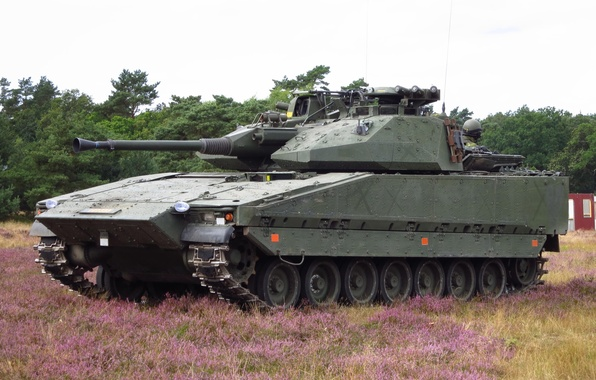 Picture machine, forest, grass, combat, infantry, CV-9030