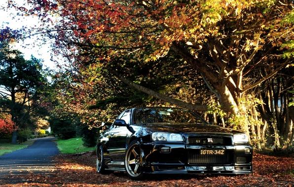 Picture autumn, Nissan, GT-R, Skyline, R34