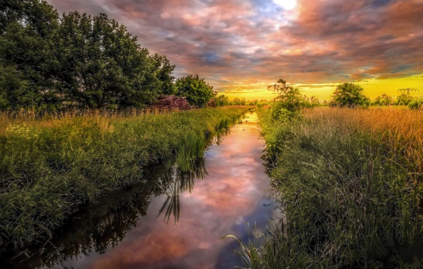 Picture greens, field, summer, grass, clouds, trees, landscape, sunset, nature, reflection, river, Germany