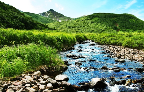 Picture greens, summer, mountains, nature, river, stream
