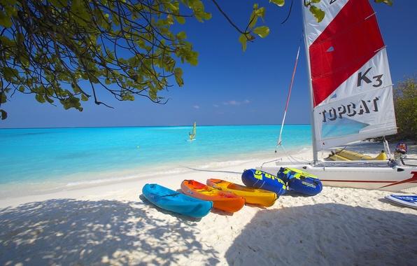 Picture sand, sea, beach, the sky, boat, sail, Board, catamaran, Windsurfing