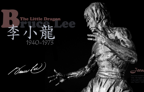 Picture memory, statue, legend, Bruce Lee, bruce lee