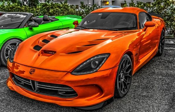 Picture Dodge Viper, Dodge Viper SRT-10, sports car