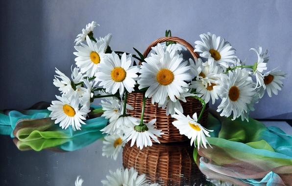 Picture flower, flowers, basket, chamomile, bouquet, basket, field, beautiful