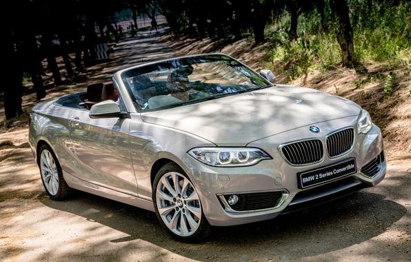 Picture BMW, BMW, convertible, Cabrio, Luxury, 2015, F23, ZA-spec, 228i