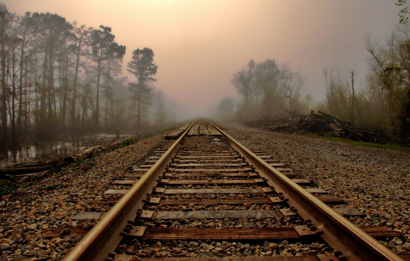 Picture road, landscape, fog, rails, morning