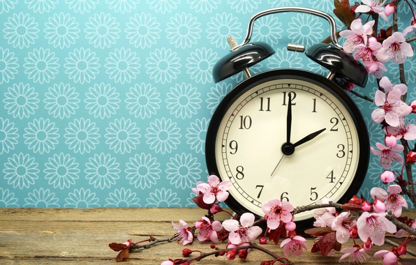 Picture time, watch, branch, alarm clock, flowers