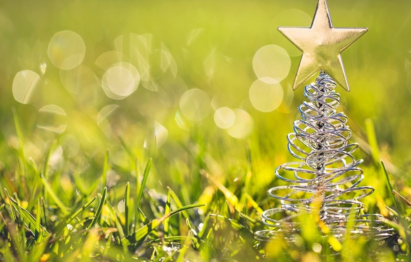 Picture grass, macro, toy, star, tree, tree, green, figure, bokeh