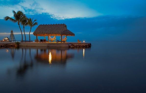 Picture palm trees, the ocean, the evening, FL, water surface, Florida, The Atlantic ocean, Atlantic Ocean, …