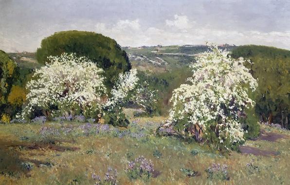 Picture trees, landscape, flowers, hills, picture, spring, the bushes, Aureliano de Beruete and Moret, Flowering Hawthorn