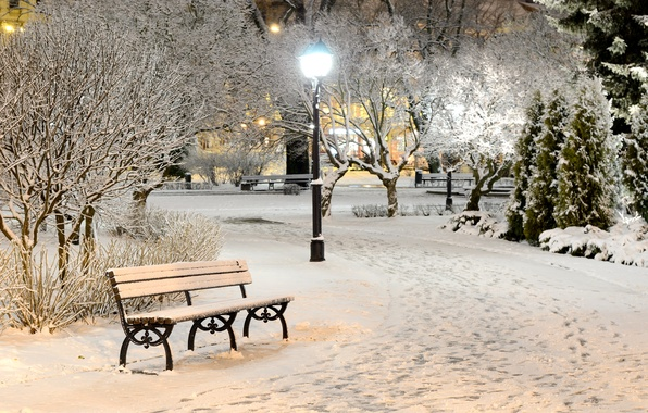Picture winter, light, snow, trees, bench, nature, Park, the evening, shop, lights, shop, bench