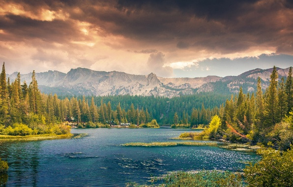 Picture forest, clouds, trees, landscape, mountains, nature, Lake