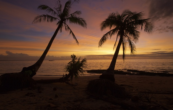 Picture summer, beach, ocean, sunset, wave, palm, philippines