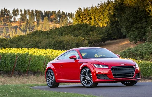 Picture Audi, Audi, Coupe, quattro, TFSI, US-spec, 2015