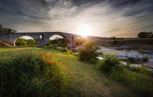 Picture the sun, rays, flowers, bridge, river, Maki, stream, flowerbed