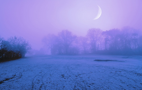 Picture the sky, snow, trees, night, fog, the moon, glade, Winter, lilac
