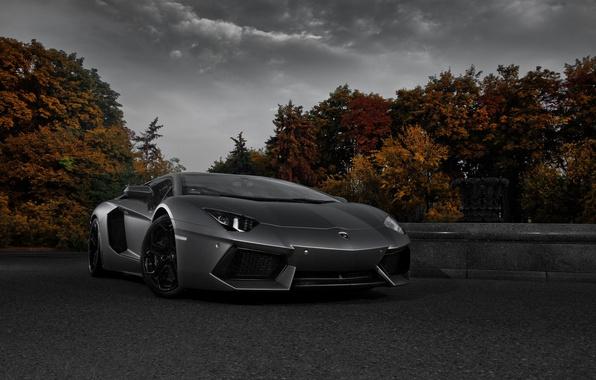 Photo wallpaper Lamborghini, Aventador, LP-700