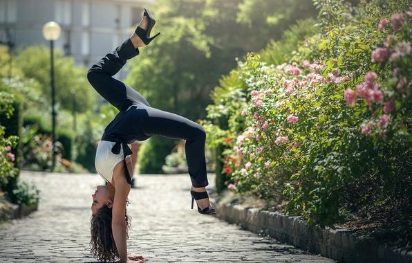 Picture stand, Mira Boumejmajen, ginastica