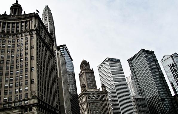 Picture the sky, building, skyscrapers, USA, America, Chicago, Chicago, USA, skyscrapers, center, illinois
