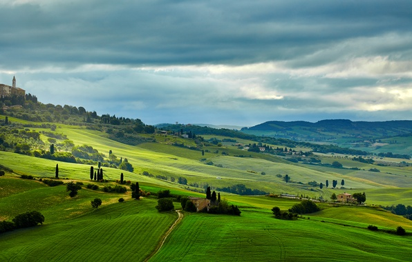 Picture greens, trees, field, Italy, houses, meadows, Tuscany