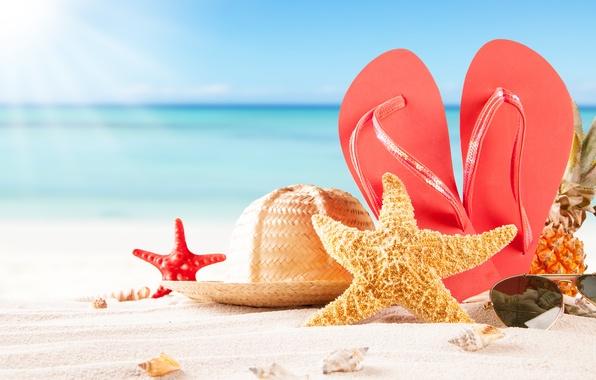 Picture sand, sea, beach, hat, glasses, shell, pineapple, slates, starfish