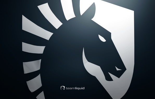 wallpaper dota2 team liquid krass images for desktop