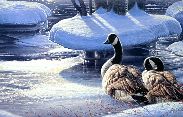 Picture winter, snow, river, ice, painting, geese, Winter Thaw, a pair of geese, Jay Johnson